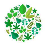 Green leaves abstract background. Vector Stock Photo