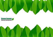 Green leaves abstract background. Vector Illustration vector illustration