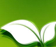 Green leaves abstract wave eco design Stock Photography
