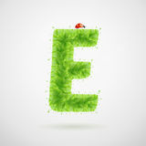 Green leaves alphabet with ladybird. Ecology summer. Letter E Stock Image