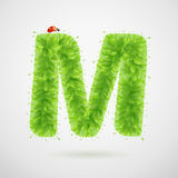 Green leaves alphabet with ladybird. Ecology summer. Letter M Royalty Free Stock Photos