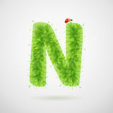 Green leaves alphabet with ladybird. Ecology summer. Letter N Stock Images