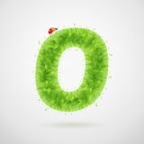 Green leaves alphabet with ladybird. Ecology summer. Letter O Royalty Free Stock Photography
