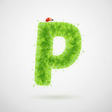Green leaves alphabet with ladybird. Ecology summer. Letter P Royalty Free Stock Photos