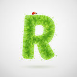 Green leaves alphabet with ladybird. Ecology summer. Letter R Royalty Free Stock Images