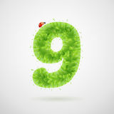 Green leaves alphabet with ladybird. Ecology summer. Number 9. Set of green summer leaves letters with ladybird royalty free illustration
