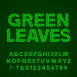 Green leaves alphabet vector font Stock Images