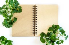 Kraft paper spiral notebook with green leaves as frame Royalty Free Stock Photos