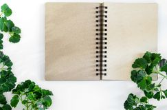 Kraft paper spiral notebook with green leaves as frame Stock Image