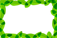 Green leaves around the white background Royalty Free Stock Photos