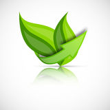 Green leaves with arrow Royalty Free Stock Photography