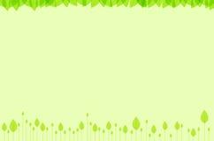 Green leaves background. Background botanical botany bright color delicate stock images