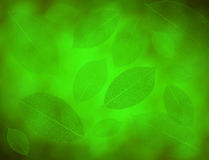 Green leaves background. Beautiful green artificial leaves background vector illustration