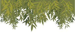 Green leaves background. Green leaves. Vector illustration for background Stock Images