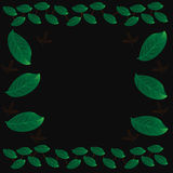 Green leaves background. Green leaves on a black background royalty free illustration