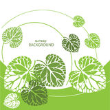 Green leaves background, vector illustration Royalty Free Stock Photography