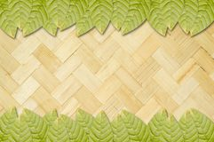 Green leaves on bamboo wall Stock Photos