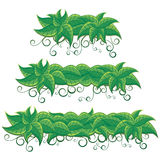 Green Leaves Banners Royalty Free Stock Images