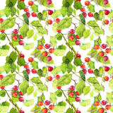 Green leaves and berries. Seamless pattern. Watercolor Royalty Free Stock Photos