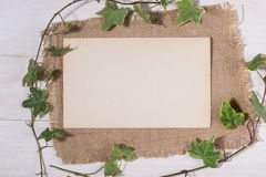 Green leaves with blank tag and paper on wooden background Royalty Free Stock Images
