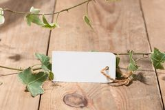 Green leaves with blank tag on wooden background Stock Photography