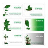 Green leaves botanical business card set. Vector design Royalty Free Stock Images
