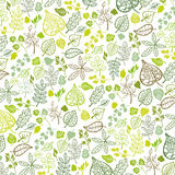 Green leaves,branches outline pattern background Stock Image