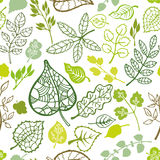 Green leaves,branches outline seamless pattern Royalty Free Stock Photo