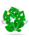 Green leaves with butterflies and waterdrops Stock Images