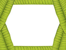 Green leaves card border Stock Photography
