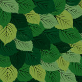 Green leaves carpet Stock Photos