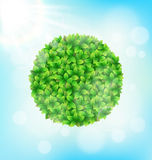 Green leaves circle frame with sun on sky Royalty Free Stock Photos