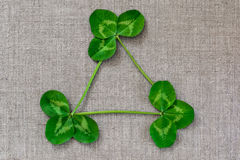 Green leaves of clover on the background of linen cloth. Royalty Free Stock Images