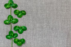 Green leaves of clover on the background of linen cloth. Stock Images