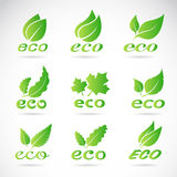 Green leaves design. Ecology icon set. Stock Images