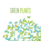 Green leaves design element Stock Image