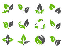 Green leaves design icons Stock Photo