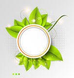 Green leaves ecology background Royalty Free Stock Images