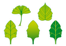 Green leaves with faces, vector set Royalty Free Stock Photography