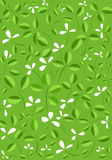 Green leaves and flower vector background Royalty Free Stock Images