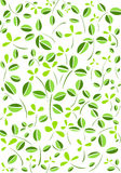 Green leaves and flower vector background Royalty Free Stock Photography
