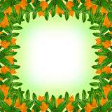 Green leaves and flowers frame Royalty Free Stock Photo