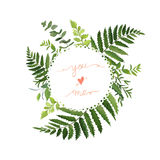 Green Leaves foliage vector round greenery leaf wreath of eucalyptus branches forest fern herb plant mix card design Delicate nat. Green Leaves foliage vector royalty free illustration
