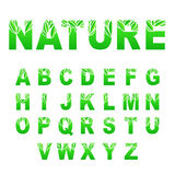Green Leaves Font Stock Image