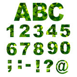 Green Leaves font - numbers. Vector illustration. Green Leaves font - numbers alphabet with green leaves solated on white background. Vector illustration royalty free illustration