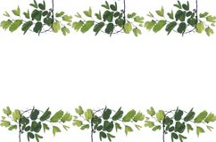 Green leaves frame Royalty Free Stock Photo