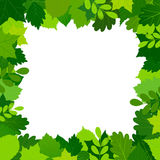 Green leaves frame. Green sommer leaves frame an white background.  vector illustration Royalty Free Stock Photos