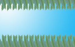 Green leaves frame in the background of beautiful gradient Stock Photo