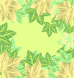 Green leaves  frame background spring or summer Royalty Free Stock Photography