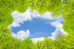 Green leaves frame and border on blue sky and clouds Royalty Free Stock Photos